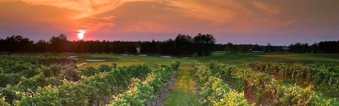 (Renault Winery Resort & Golf Club)