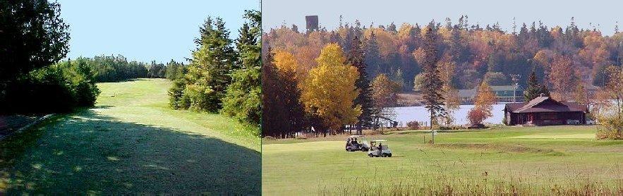 "Les Cheneaux takes pride in its self-designation as a ""True Natural"" course (Les Cheneaux Golf Club)"