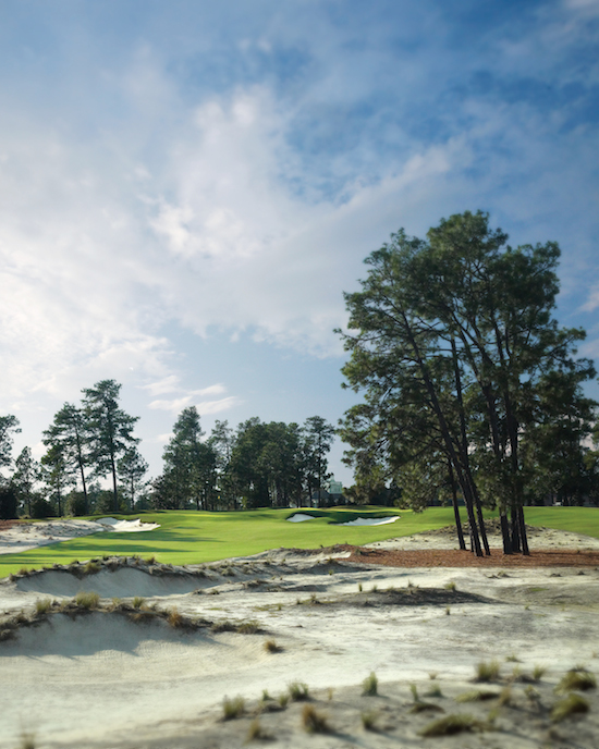 The par-4 13th at Pinehurst No. 2 is a perfect example of the rugged look reintroduced by Coore and Crenshaw. (Pinehurst Resort)