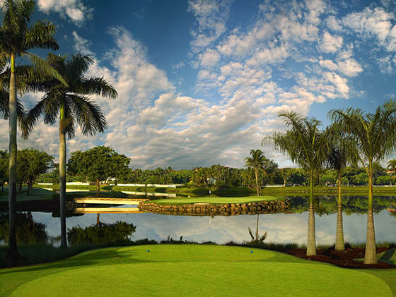 A new course to play on Florida golf vacations:  the Jim McLean Signature Course at Doral Golf Resort (hole 13).