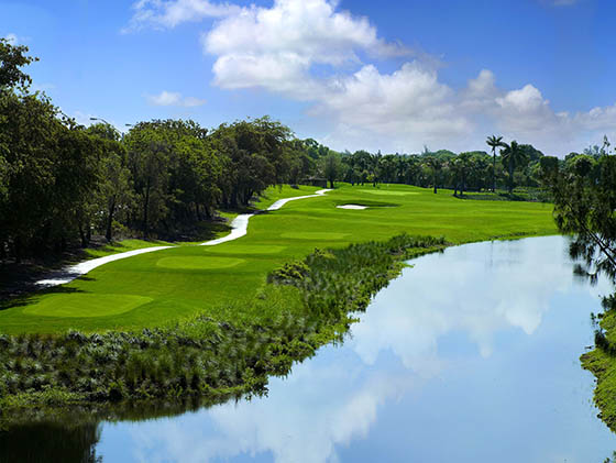 Hole 17 of the Jim McLean Signature Course at Doral Golf Resort.