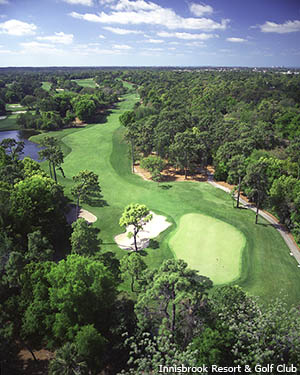 The Copperhead Course at Innisbrook Resort provides a unique experience for Florida golf vacations.