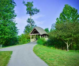 Covered Bridge & Champions Pointe Stay & Play
