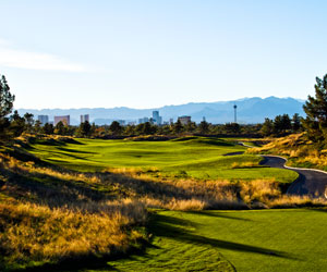 Royal Links & Paiute Wolf Special