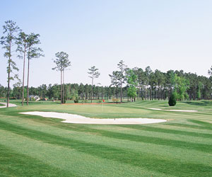 East Coast PGA 6 Round Golf Package with a $100 Gift Card