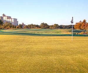 Golf & Grub at Rosen Shingle Creek
