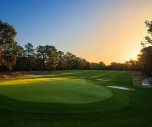 Golf Lovers Package at Pine Needles