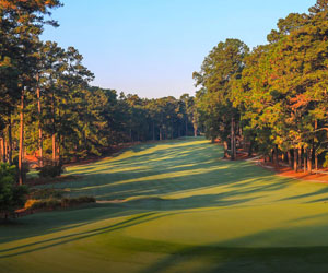 March Into Mid Pines