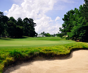 Stay & Play in Santee, SC!