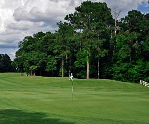 Executive Package with Golf Santee