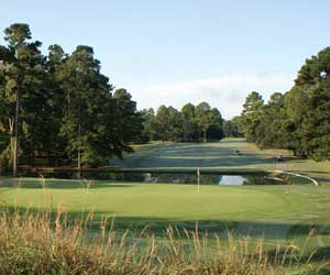 Santee / Charleston Combo Stay & Play Package