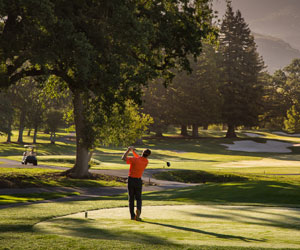 Unlimited Golf Package at Silverado Resort and Spa, Napa