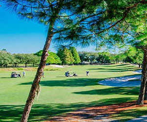 Corporate & Group Stays with TPC Tampa Bay