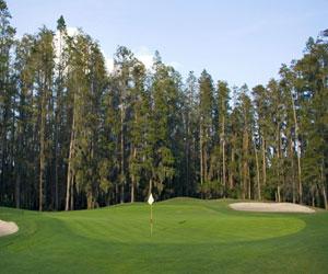Premier Golf Experience Package at Saddlebrook Resort