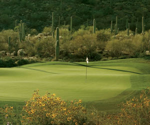 Ritz-Carlton at Dove Mountain Stay and Play