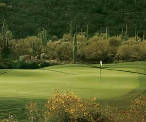 Unlimited golf for two at Ritz Carlton Dove Mountain